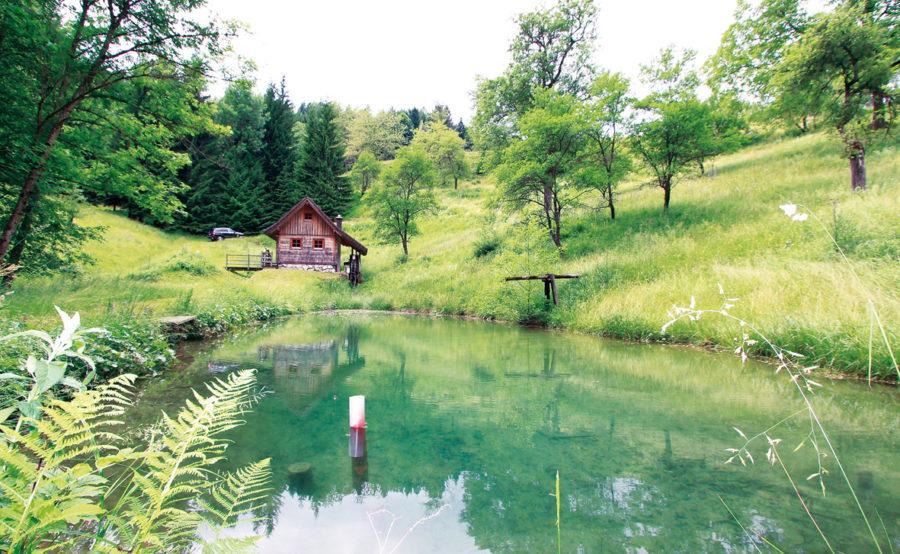 Hütte mit Fischreich in Oberösterreich