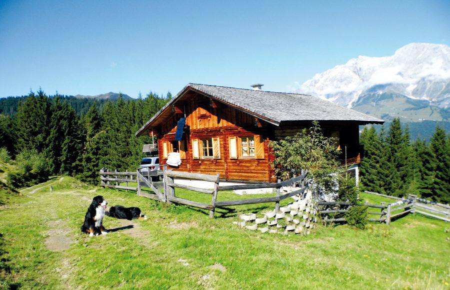 Hüttenurlaub mit Hund in Österreich